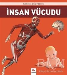 Almidilli - İnsan Vücudu
