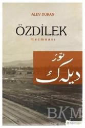 Hiperlink Yayınları - Özdilek Mecmuası