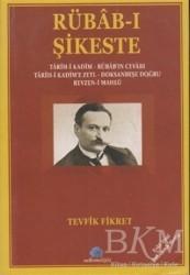 Salkımsöğüt Yayınları - Rübab-ı Şikeste