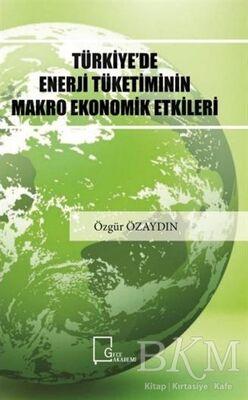 Türkiye'de Enerji Tüketiminin Makro Ekonomik Etkileri