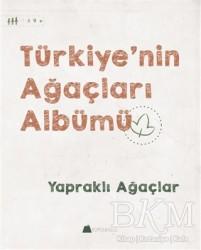Kumdan Kale - Türkiye'nin Ağaçları Albümü - Yapraklı Ağaçlar