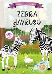 Yumurcak Yayınları - Zebra Yavrusu - Maceracı Hayvanlar Serisi